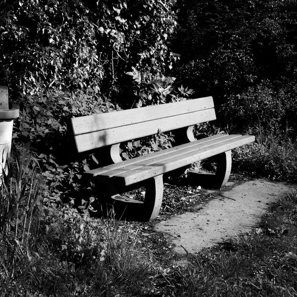 This bench caught many tears. Outdoors Tears Bench Blackandwhite Photography First Eyeem Photo Edendessart The Street Photographer - 2017 EyeEm Awards EyeEmNewHere