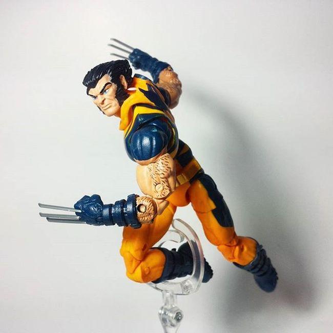 Wolverine Logan Thebestatwhathedoes Xmen Mutant Marvel Marvellegends Marvelcomics Marvelnation MarvelFan Toyfan Actionfigure Toys Toyphotography Toypizza Toysarehellasick Toycollector Toycommunity Toycollection Thefigureverse