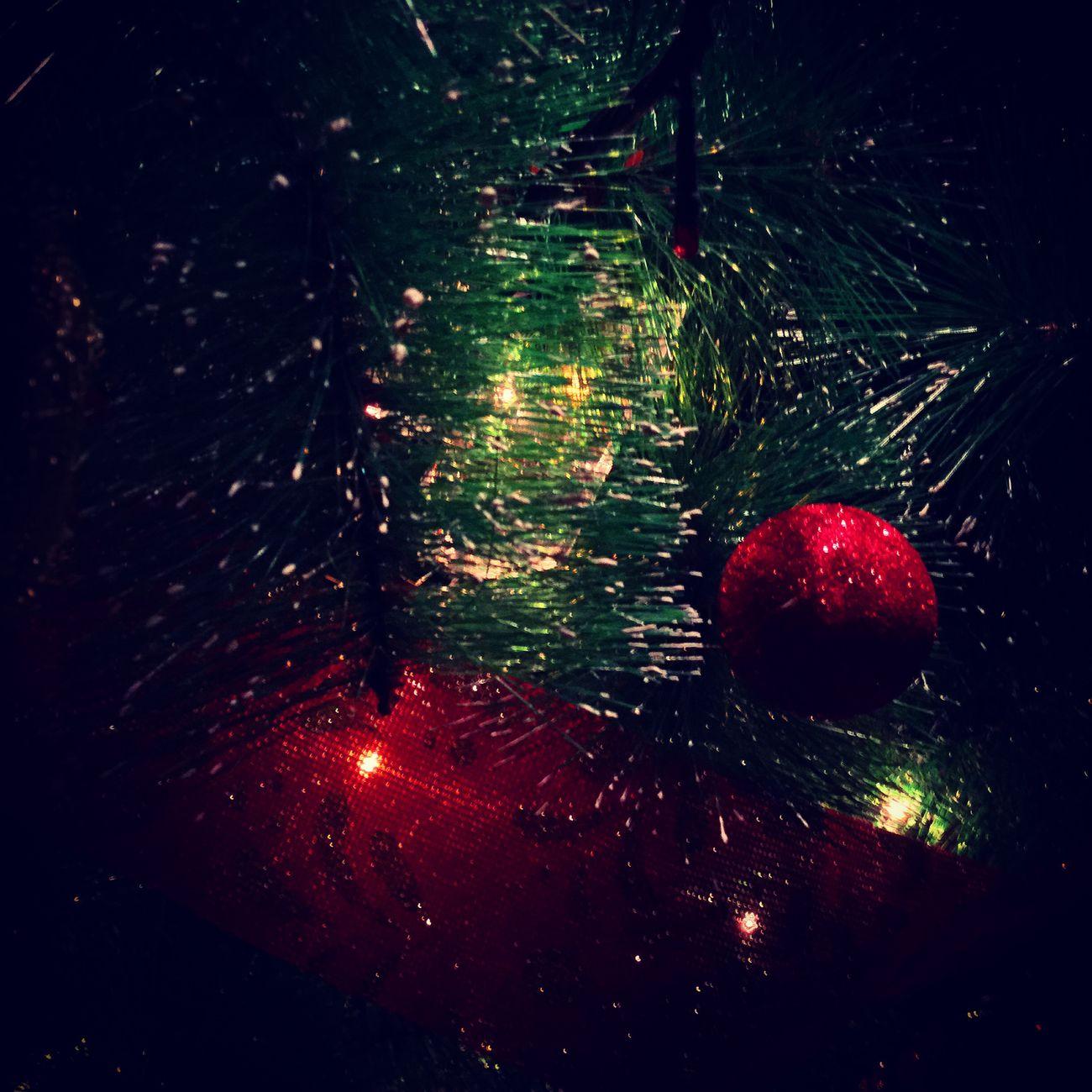 Lastdayofchristmas
