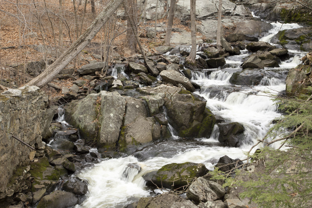 Beauty In Nature Connecticut Day Flowing Flowing Water Forest Long Exposure Motion Nature No People Non-urban Scene Outdoors Rock Rock - Object Rock Formation Scenics Southford Falls State Park State Park  Stream Tranquil Scene Tranquility Water Waterfall