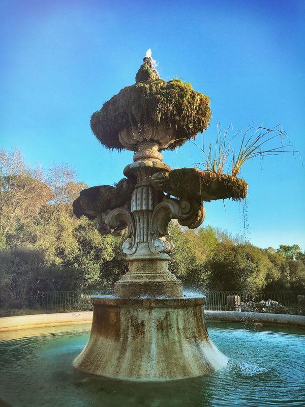 Fontana Fountain Sculpture Villa Pamphili Roma Old Ruin Parchi Romani