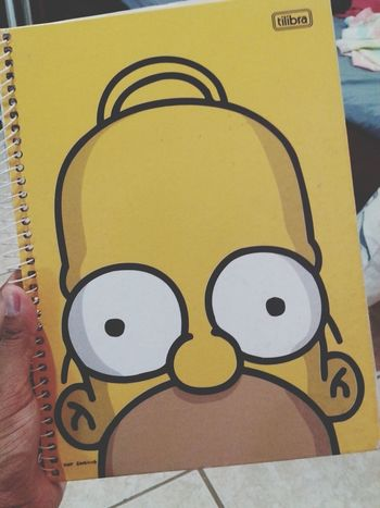 The Simpsons My Notebook Taking Photos Cheese!