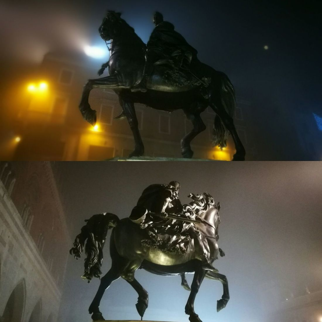 Piazza Cavalli Nella Nebbia