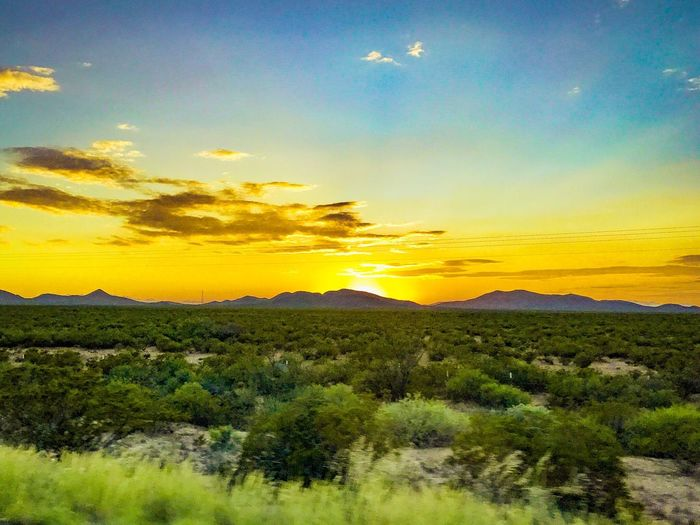 Sunset New Mexico. Sunset Beauty In Nature Landscape Sky No People Desert Southwestern Usa Paint The Town Yellow