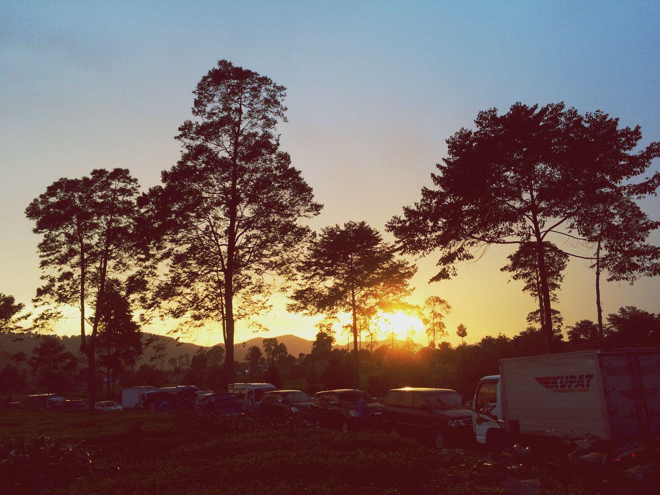Enjoying Life Sunset