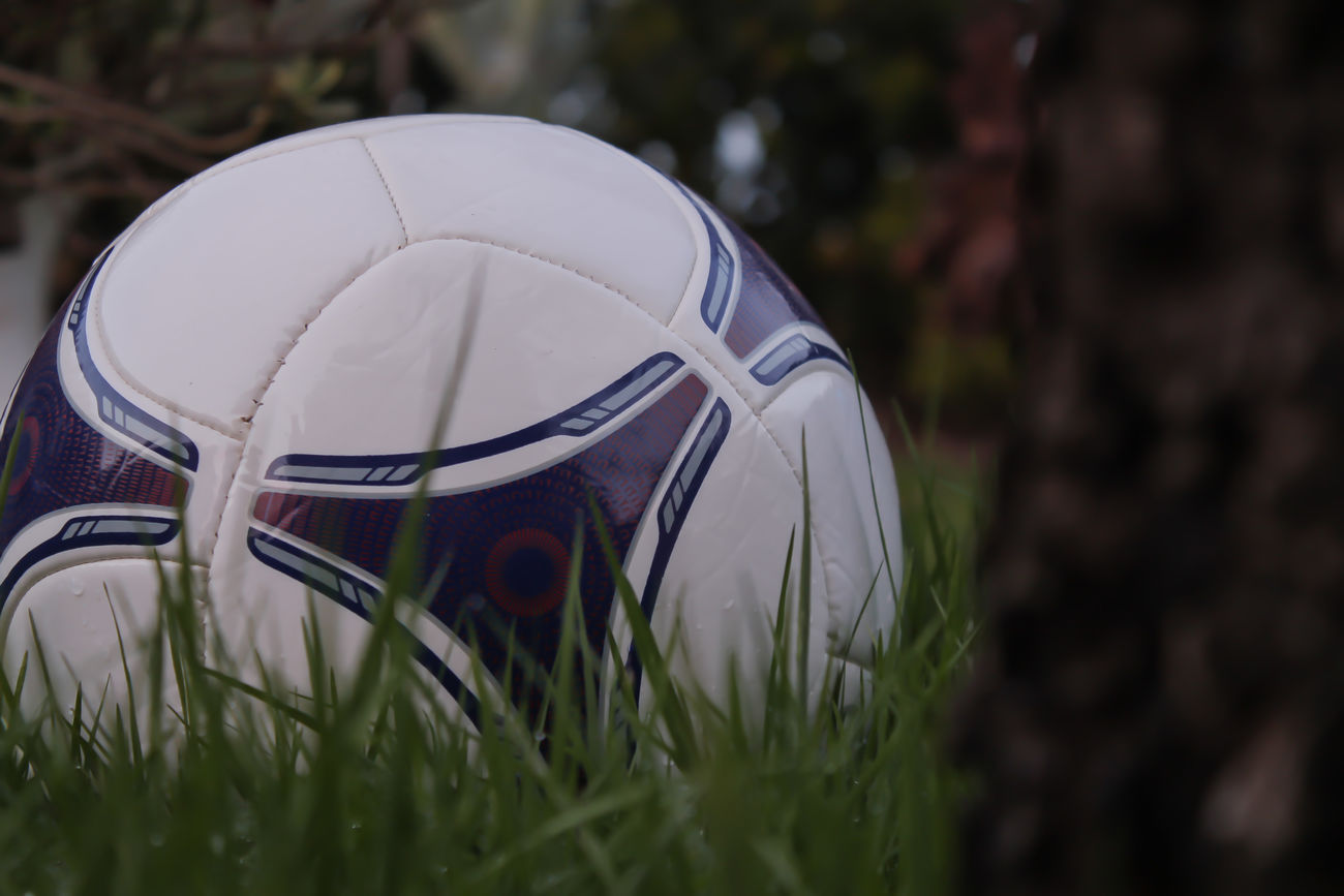 Beautiful stock photos of soccer, Close-Up, Day, Field, Grass