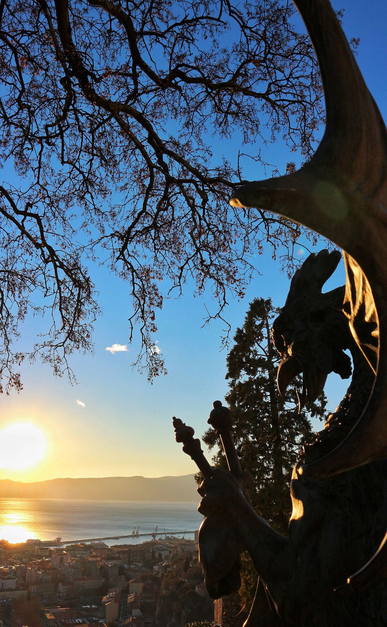 Beautiful Look Sea Sun Branches Dragon Trsat City Rijeka City View Photography