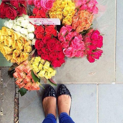Roses Instagrampicture Love It 🌹✨