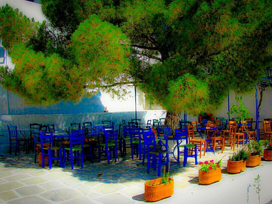 Q Quiet Places Traditional and Picturesque Coffee Shop Cafe Pine Tree Tables And Chairs Flowers Tranquility Tranquil Scene Lefkes Village Paros Island Greek Islands No People Peace And Quiet Summer Memories 🌄 Summer Views Outdoors Flowers Flower Pots Village Life Shadow And Light