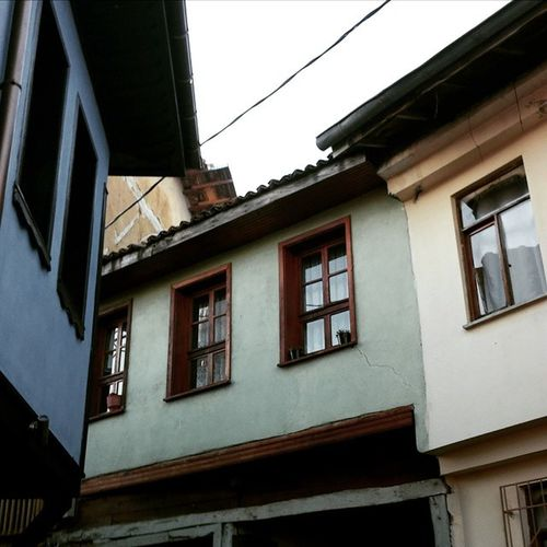 Focus Winter House Ludving Filter Blue Green Turkishouse