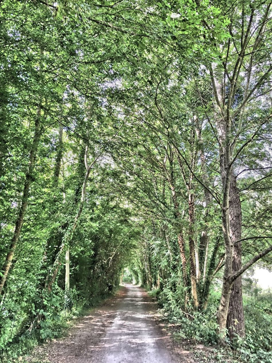 En balade Sur Les Chemins Balade