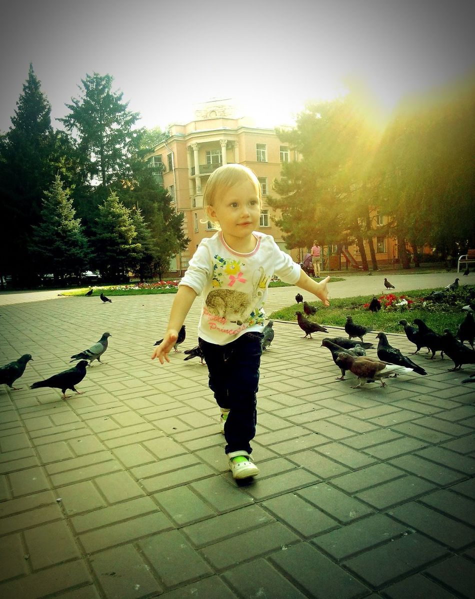 Baby Sunlight Child Children One Person Outdoors Day Real People кормитьголубей птицы площадь голуби Ростов-на-Дону Pigeon Doves Animal Themes Rostov-on-Don City Pigeons Architecture
