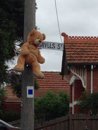 Streetart Lynched Bear