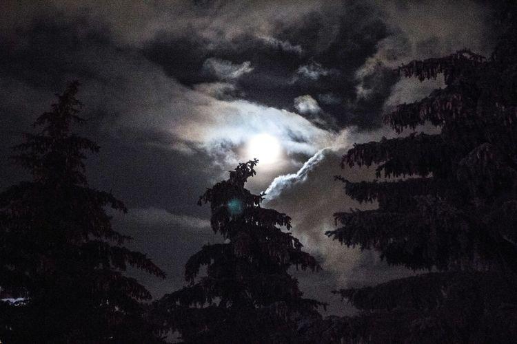Deadмороз Russia Night Sky Horror