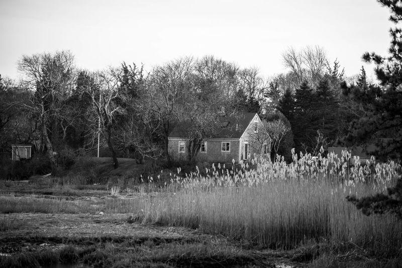 On the Marsh Atlantic Grass Grassy High Tide House Landscape Marsh Outdoors Rural Scene Saltwater