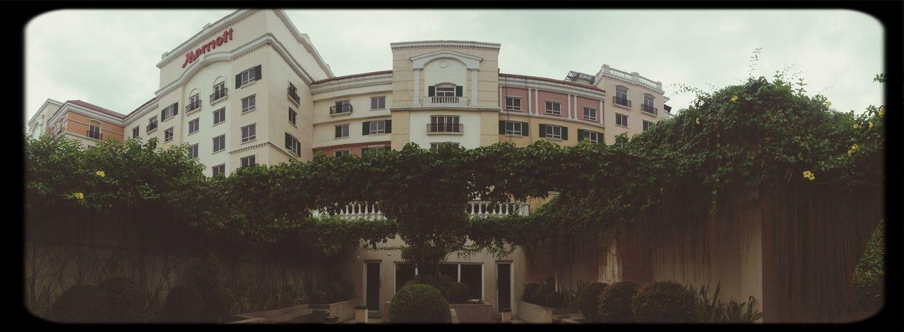 Ailine Filter Hotel