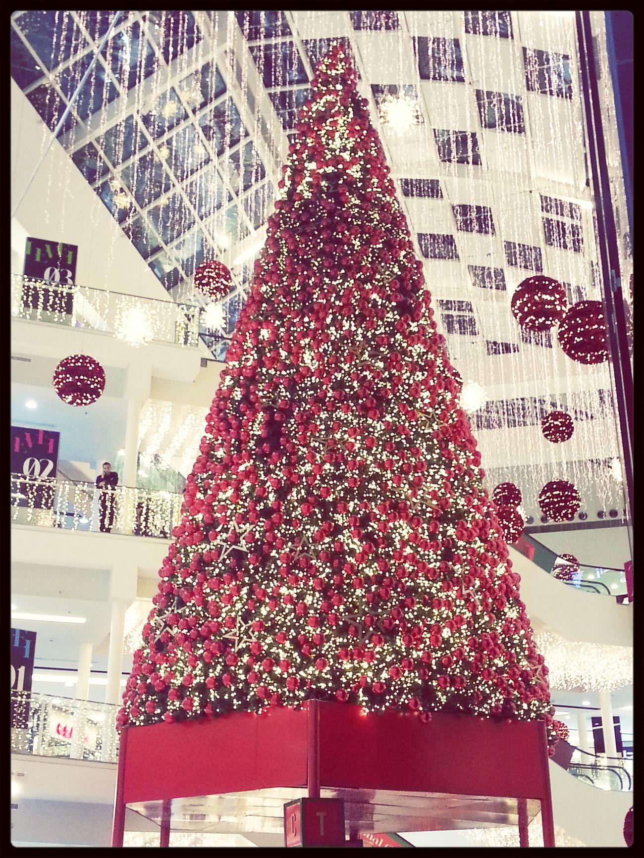 Christmas Tree Christmastime Christmaslights Lemall