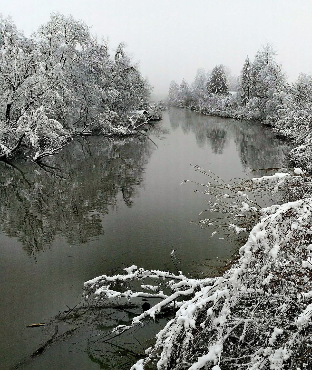 Water Riverbank Snow Covered Trees And Bushes Nature Cloudy Weather Sky