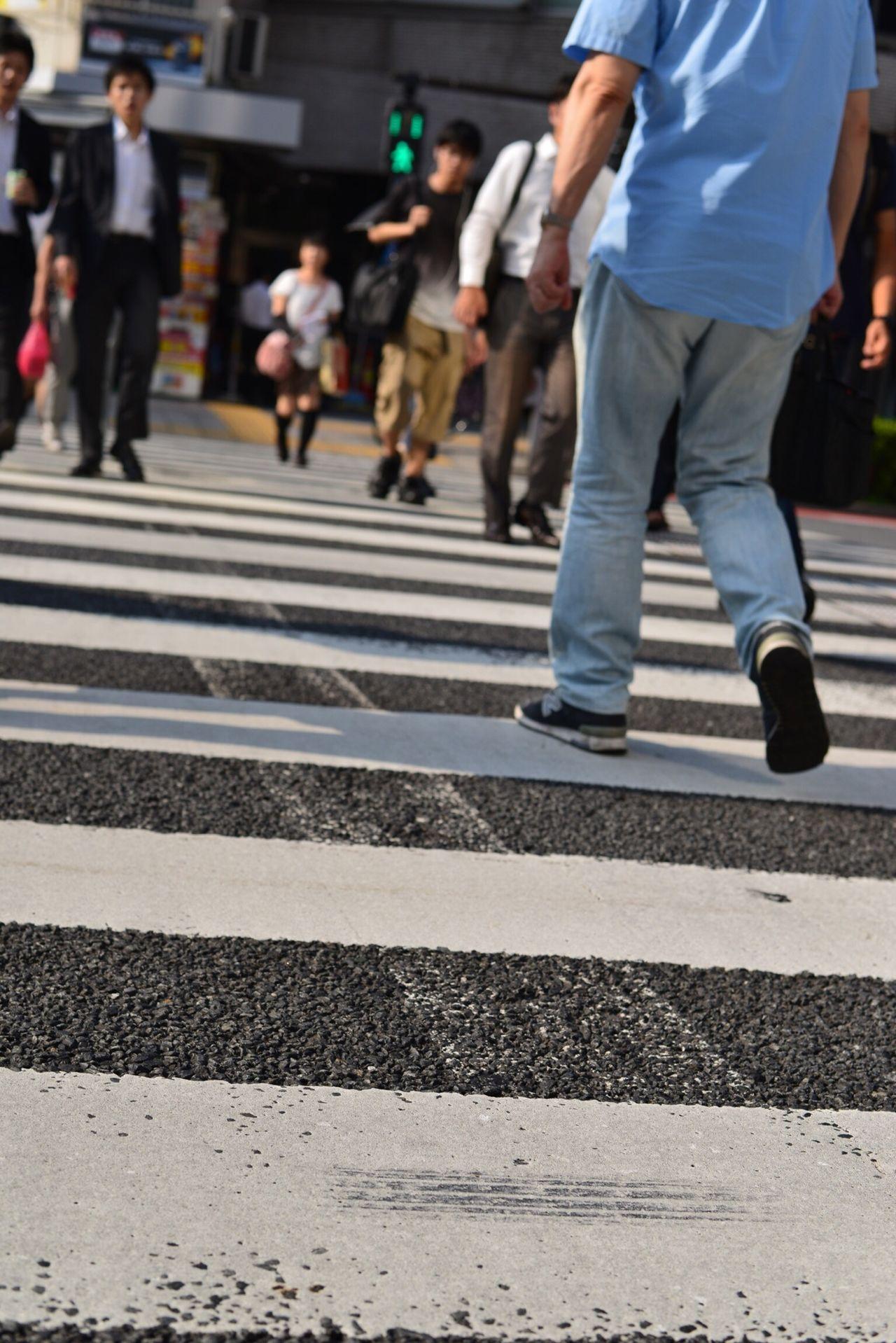Beautiful stock photos of zebra, City, City life, Color Image, Commuter