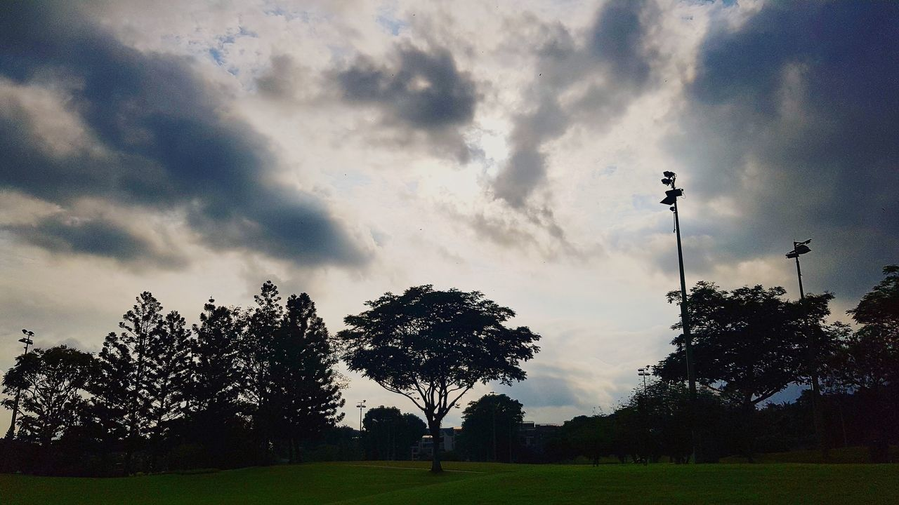 tree, cloud - sky, sky, grass, field, silhouette, one person, nature, outdoors, real people, men, growth, day, beauty in nature, one man only, people