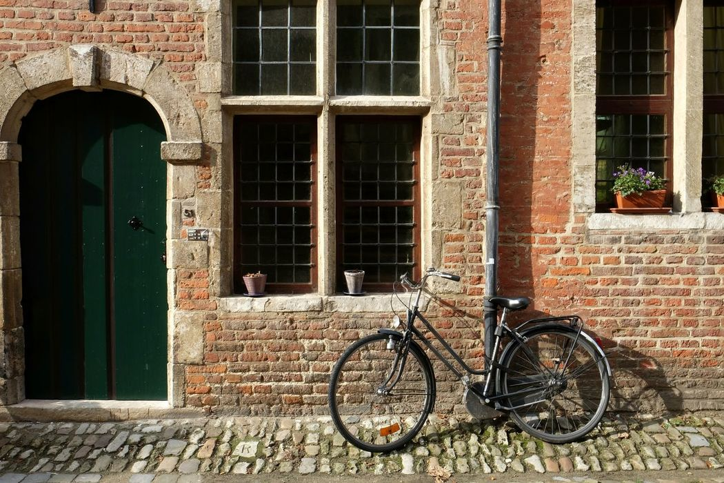 Window Brick Wall Grid Bike Flowers Door Sunny Fall Colors Pipe Dinamo Wheel No People
