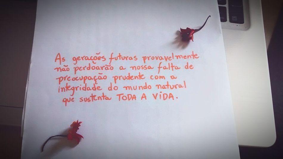 Think more about your actions to the world Sustentabilidade Repense Porummundomelhor Porumbrasilmelhor