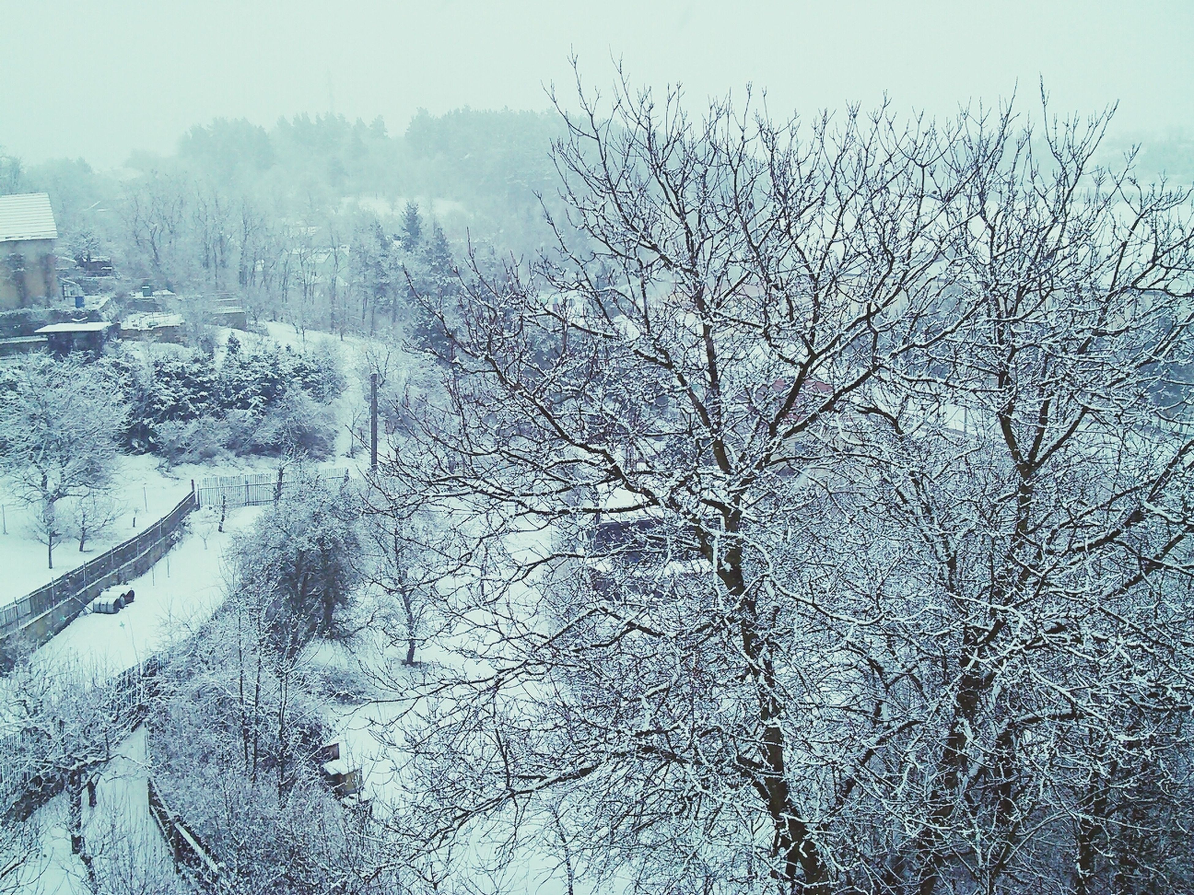 winter, cold temperature, snow, season, weather, bare tree, frozen, tree, covering, nature, building exterior, branch, tranquility, built structure, architecture, clear sky, day, beauty in nature, sky, water