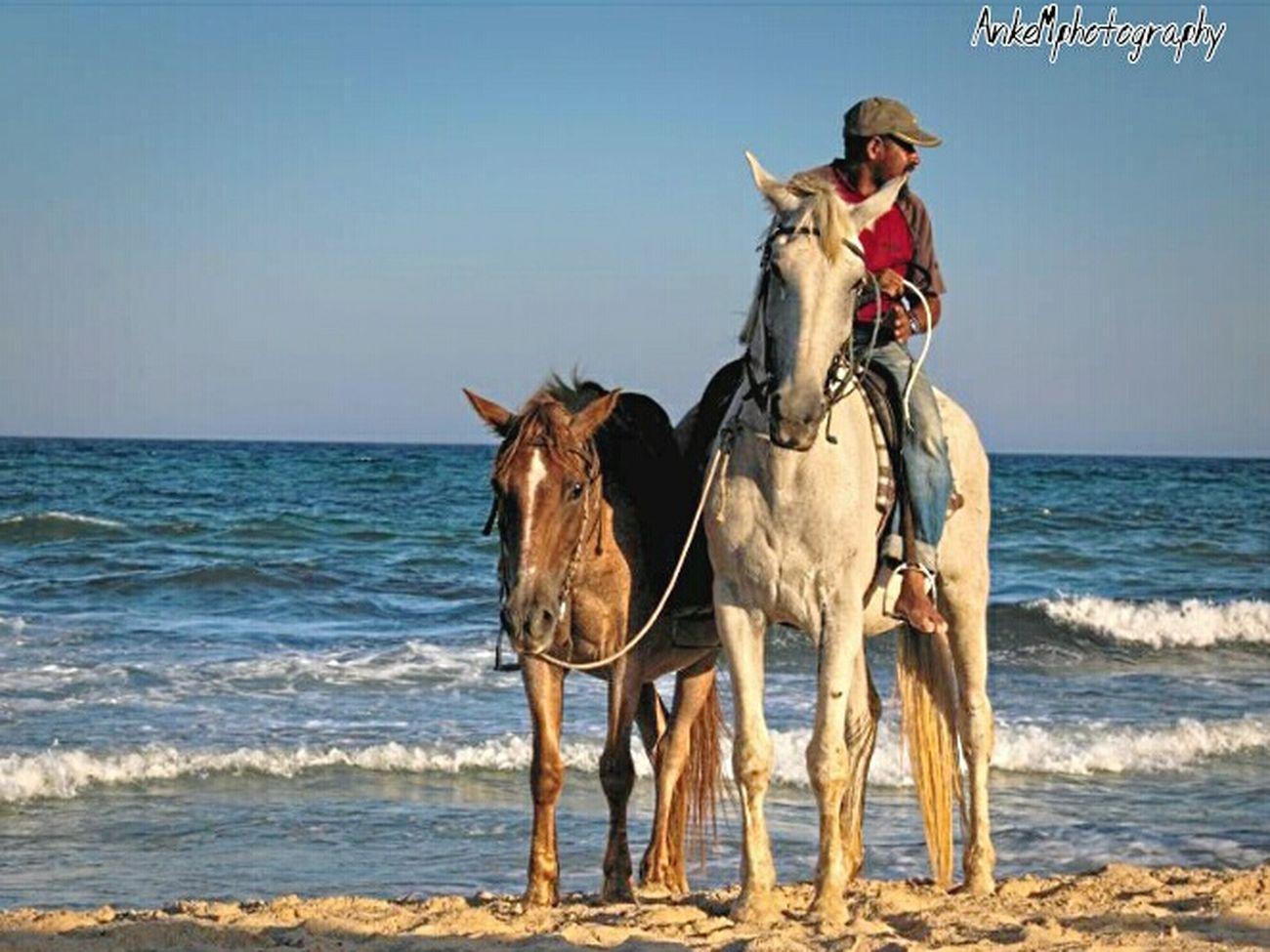 Taking Photos Hello World Cheese! Beach Canonphotography Holiday Tunesia