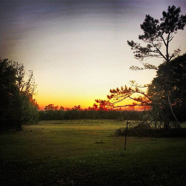 Fire in the sky. Last sunset for me on Red Hill for a little bit. Good night, moon. GA Ruralgeorgia Harrisonga Sun sunset vscocam vscopictures vscogood vsco instagood photooftheday ig_treasures iggeorgia goodnight goodtimes family