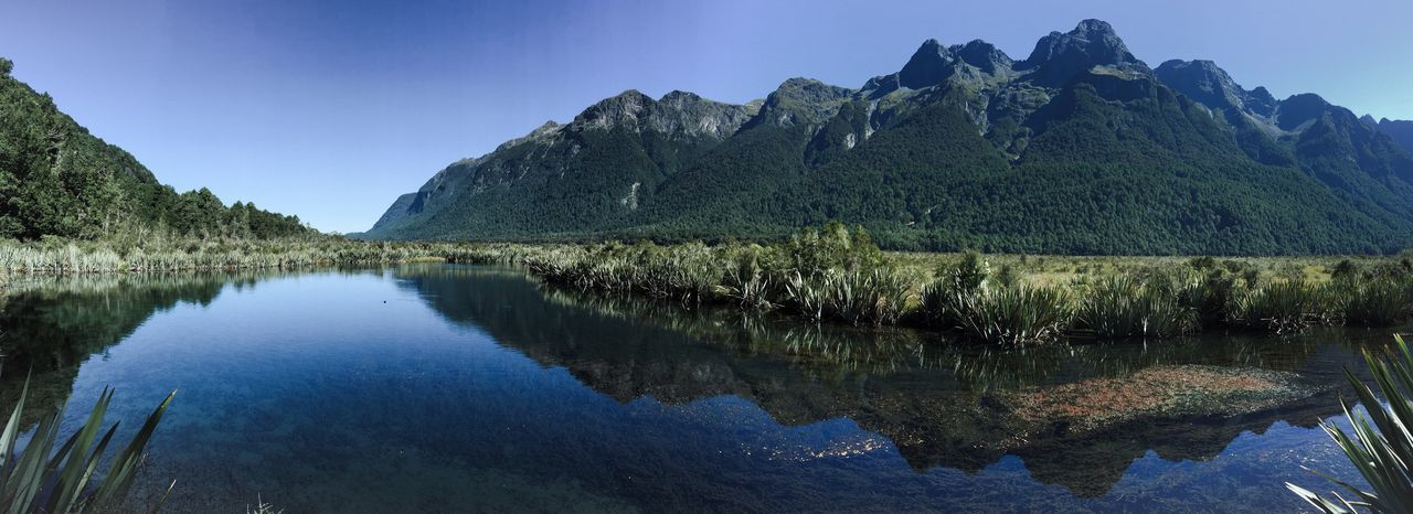 Water Nature Scenics Tranquil Scene Reflection Tranquility Beauty In Nature Mountain Lake Clear Sky Sky Growth Tree No People Outdoors Mountain Range Travel Destinations Day Landscape Water Reflections Mountains Mirror Lake New Zealand