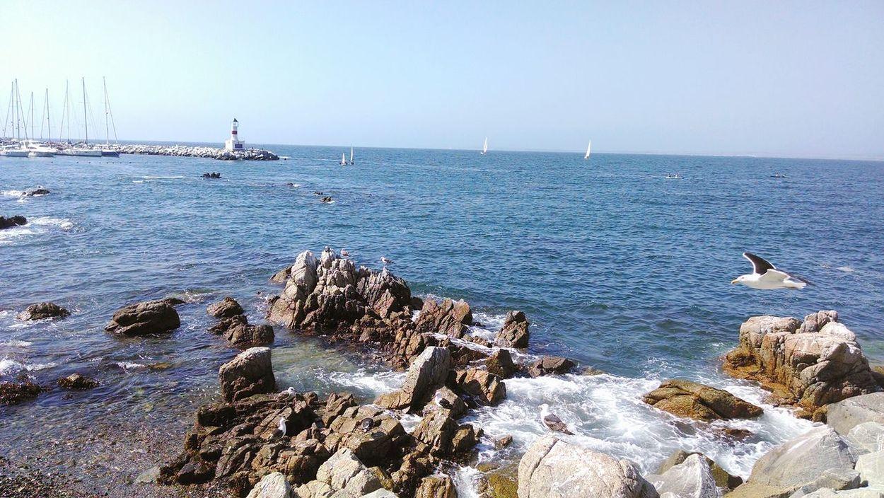 Colors Of Nature Summertime Chile Ocean View Playa #beach Postal Nature Taking Photos Viña Del Mar