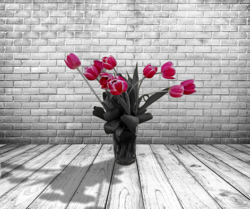 Beauty In Nature Bouquet Close-up Day Flower Flower Head Fragility Freshness Nature No People Outdoors Petal Pink Color Tulip Pink Springtime Beautiful Nature Tulips Flowers Blackandwhite Blooming Indoors  Standing