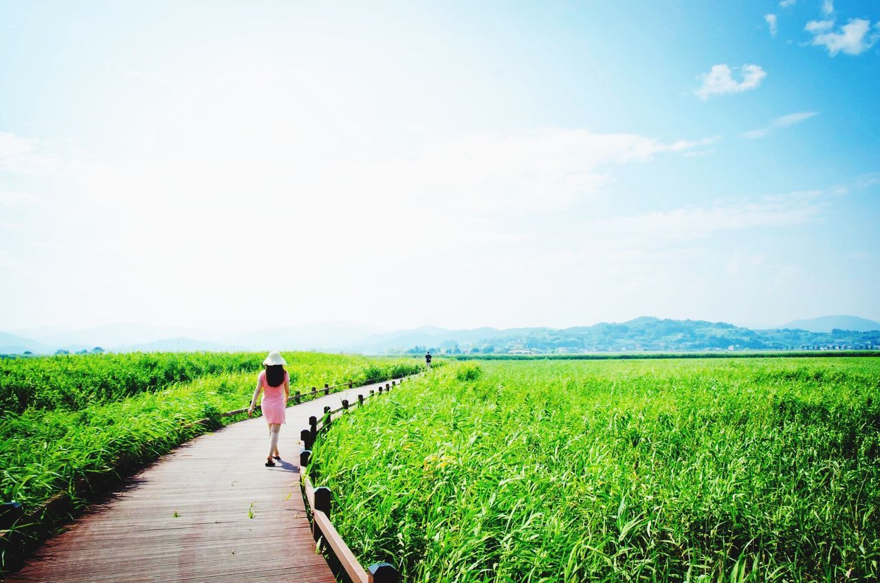 field, full length, rear view, landscape, agriculture, one person, grass, day, sky, walking, real people, nature, women, rural scene, outdoors, growth, tranquil scene, men, standing, tranquility, farmer, scenics, beauty in nature, adults only, adult, only women, people, young adult