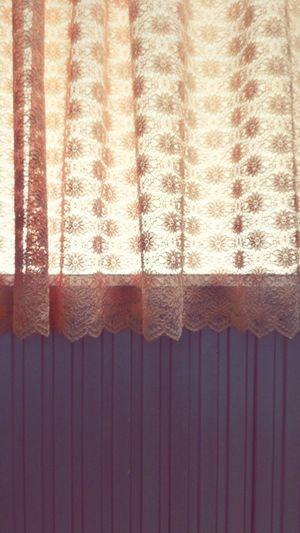 No People Textured  Close-up Day Backgrounds Bathroom Door Textured  Toilet Door Toilet Abstract