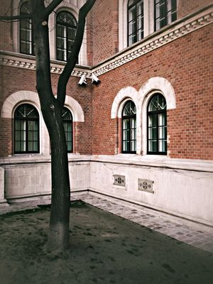 at PI Deutschmeisterplatz by Gu Photography