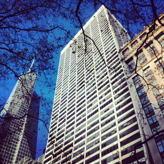 365photosoneadayforayear Instagram Newyork Skyscrapers Photooftheday Photooftheday Lookingup Igaddicts Instagood Instaphoto Statigram Webstagram DailyShot