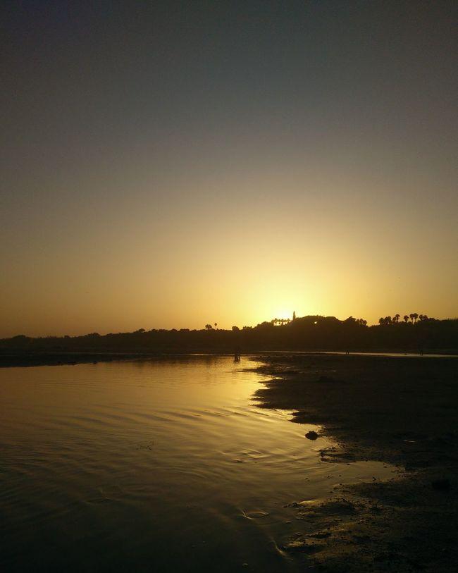 Golden Catch Sunset Crab Catcher Nature Lover