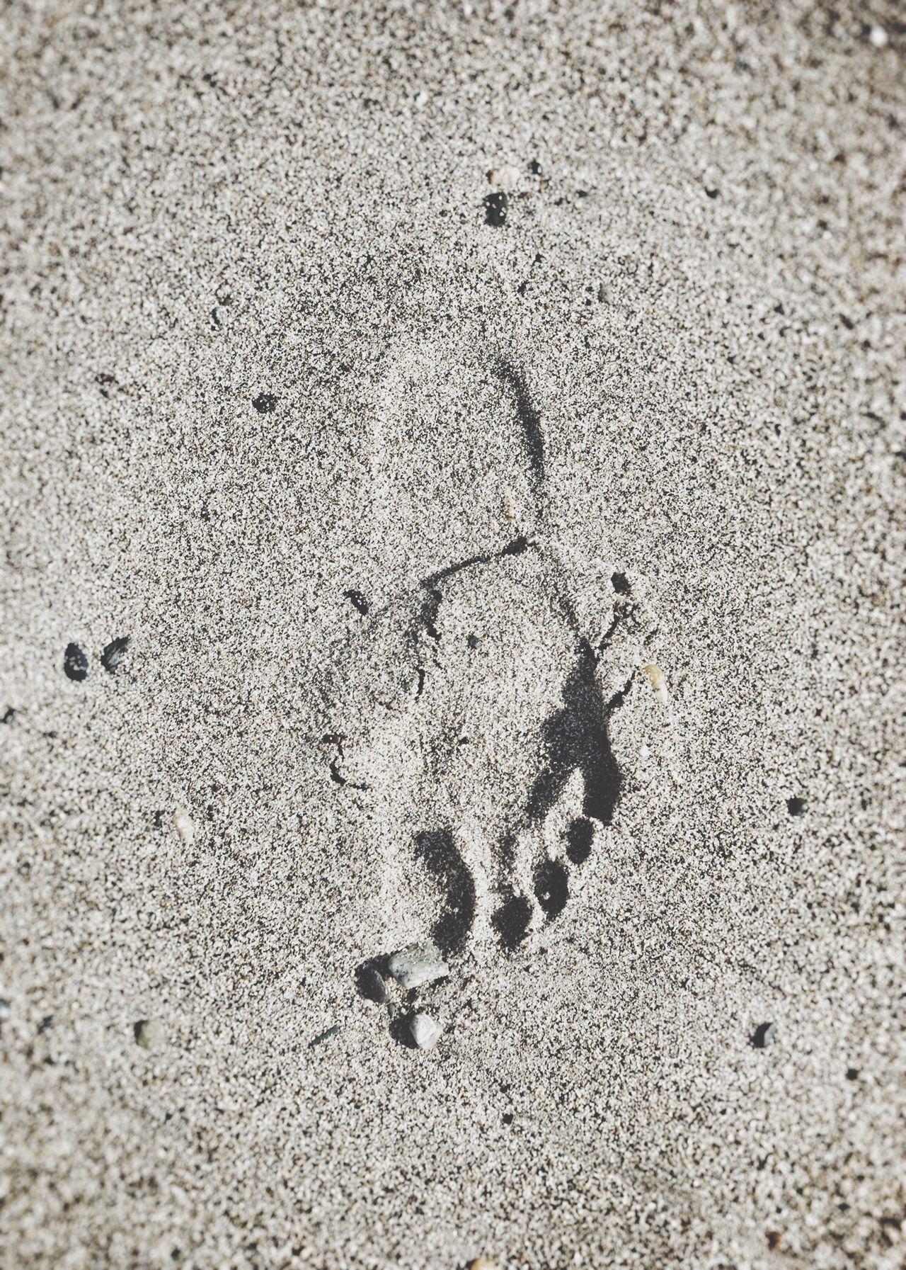 AMTPt_community Sand Beach Nature Memory Time FootPrint Foot Footprints