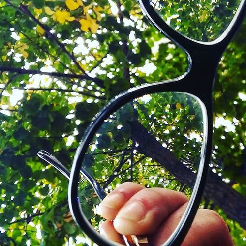 Pointofview Differentview Greenplace Inthecity  Love InstaPlace Instamoment Myglasses Glasses Eyeglasses  Tree Autumn Autumncollection Point Of View Prospective Instadaily Daily Dailyshoot October Cute