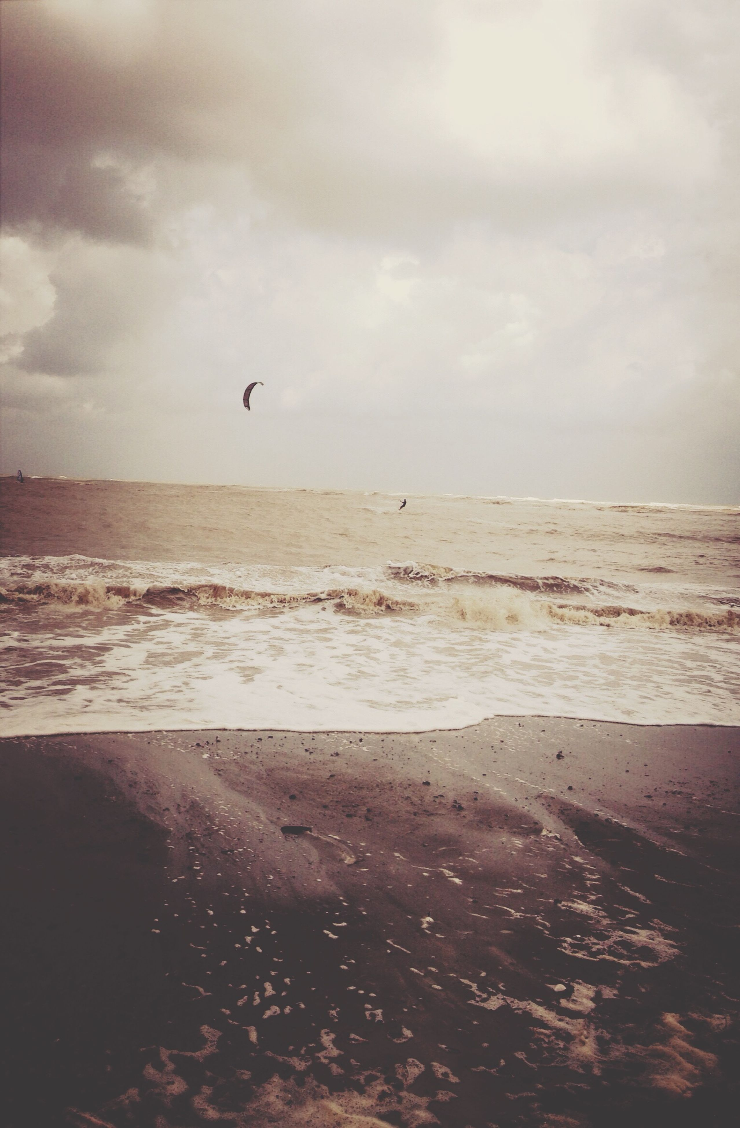 sea, bird, water, beach, sky, flying, horizon over water, animal themes, animals in the wild, shore, cloud - sky, wildlife, scenics, sand, nature, tranquility, tranquil scene, beauty in nature, one animal, seagull