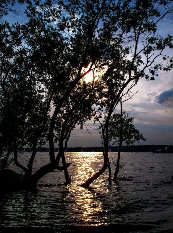 Passar uma tarde no Rio Havel, ao sol que arde no Rio Havel, ouvindo a água do Rio Havel, tirar fotos no Rio Havel... Berlin Sunset Nature 25 Days Of Summer