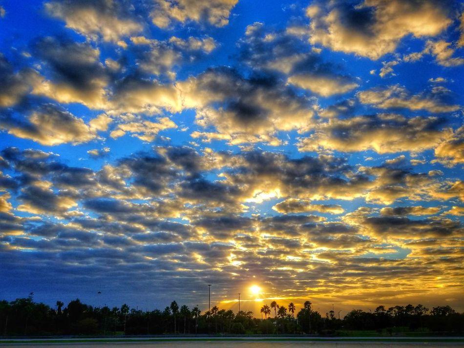 Dopey Sunset Sky Beauty In Nature Freelance Orangeandblue Beauty Orlandoflorida Sun Clouds Sunset Clouds And Sun Grateful