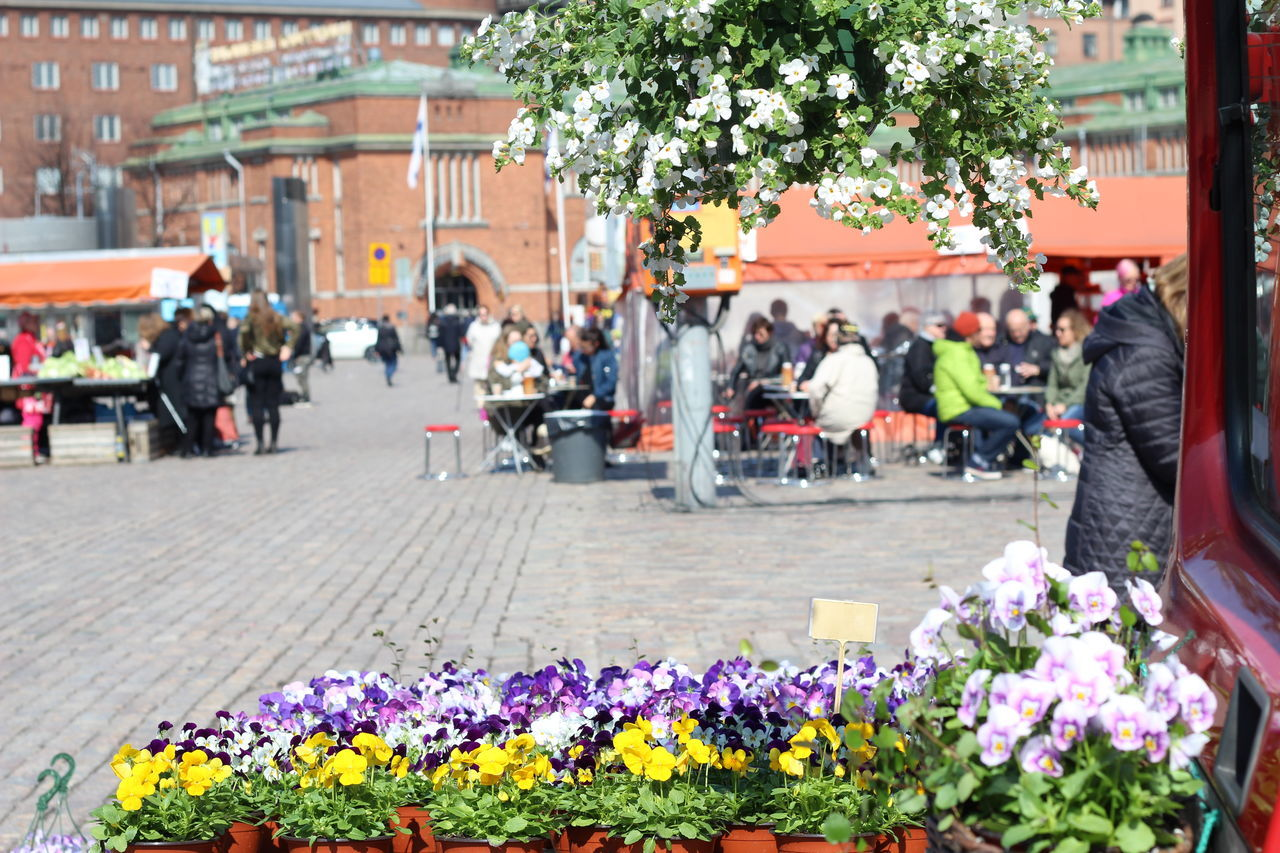 Pictures taken at Hakaniemi Market Hall, no editing, no touching. Abundance April 2016 City City Life Cultures Day FIN Finnish Spring Flower Flower Shop Fragility Freshness Hakaniemen Kauppahalli Hakaniemi Hakaniemi Market Hall Hakaniemi Tori Helsinki Leisure Activity Lifestyles Market Market Stall Multi Colored Outdoors Upclose Street Photography The Shop Around The Corner