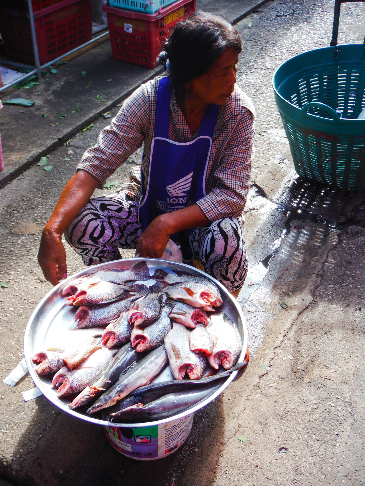 At the local market Sattahip Thailand Fish Market Freshness Fresh Fish Market Fresh Fish Dead Fısh Fish Fish For Sale For Sale Local Market Thai Market FishMarket Seafood Market Portrait Natural Light Portrait Natural Light Thai Woman Thai Person Morning Market Everyday Lives Everyday Life Person Day