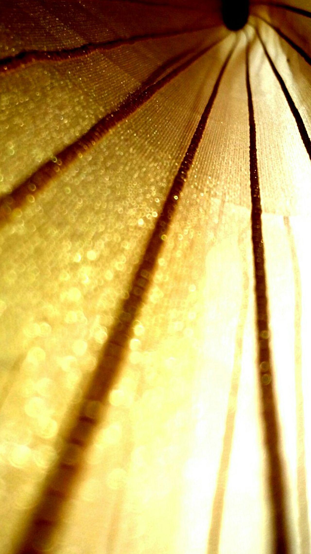 Curtain Shines Golden Shining