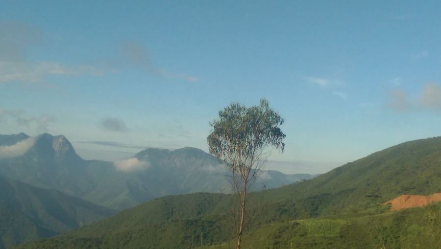 Andes Mountains, road to Jaén, Cajamarca, Perú Hanging Out