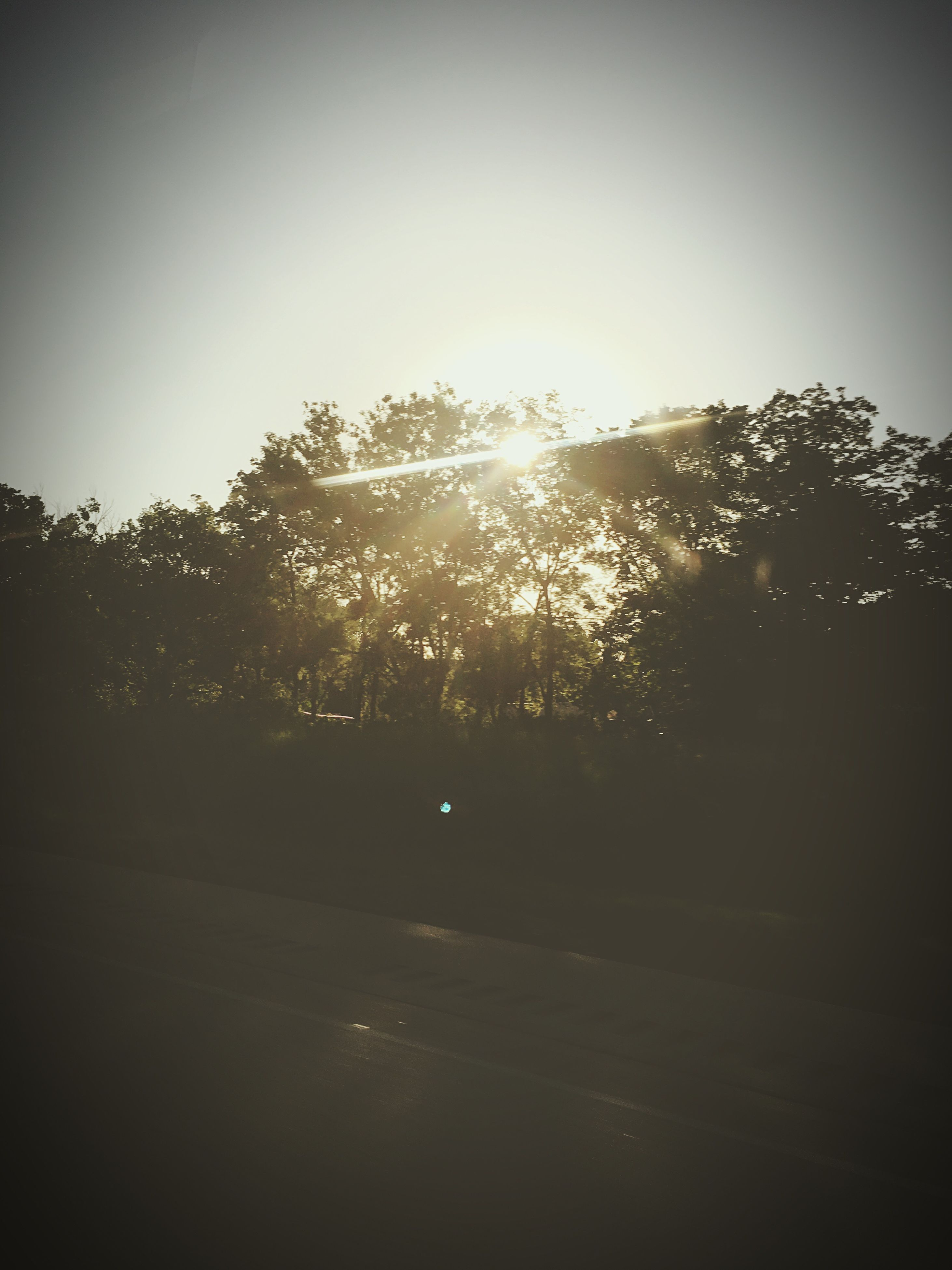 tree, silhouette, clear sky, sun, tranquility, sunlight, sunset, copy space, tranquil scene, nature, sky, beauty in nature, road, scenics, auto post production filter, sunbeam, dark, outdoors, landscape, growth