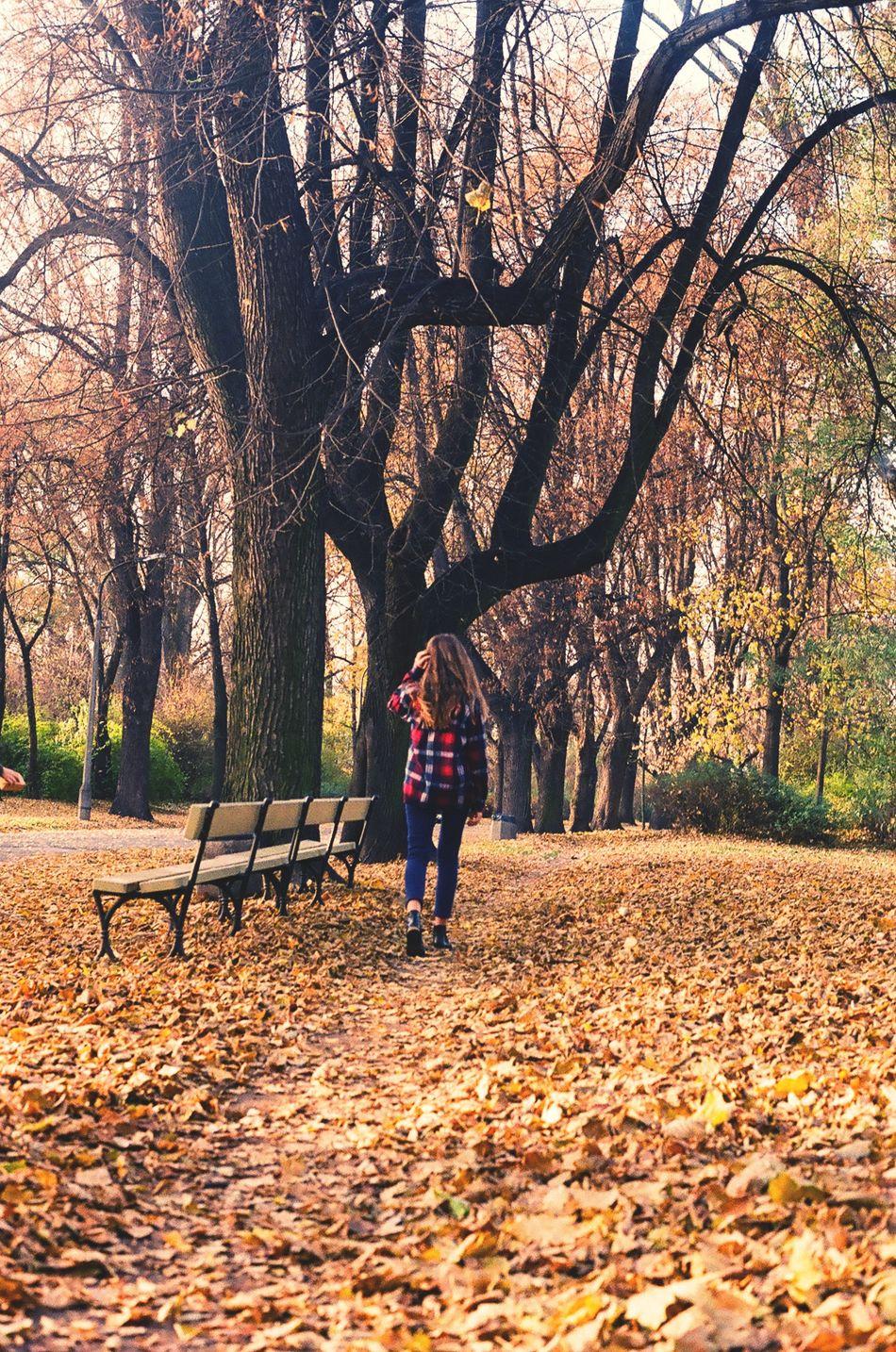 Photo Photography Girl Warszawa  Warsaw Poland Polska Saska Kepa Fall Autumn Jesień Park Skaryszewski 35mm Minoltasrt101 Minolta Park