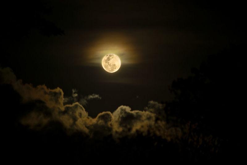 Noche tranquila de luna llena en Guanacaste Night Lights Nightphotography Nikon Astronomy Beauty In Nature Moon Moon Surface Moonlight Nature Night Nikonphotography No People Outdoors Sky Tranquil Scene Tranquility