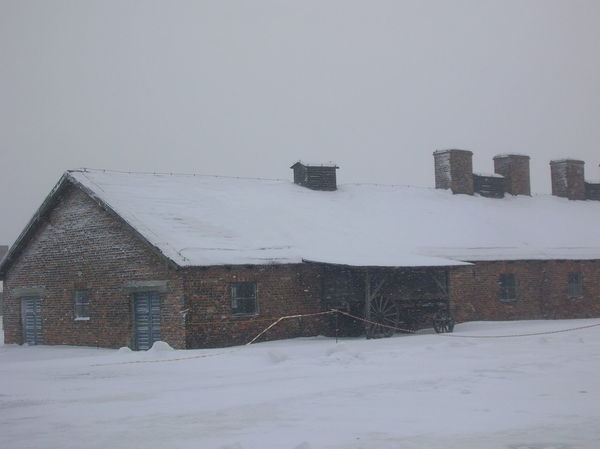 Campo di concentramento Birkenau, gennaio 2010 Architecture Building Exterior Built Structure Cold Temperature Day Field Holocaust No People Outdoors Roof Snow Snowing Winter